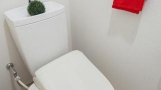 トイレのタオル掛け